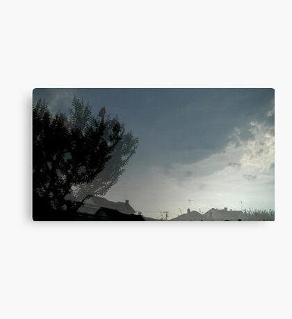 Hurricane Irene Doubletake  Canvas Print