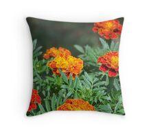 Marigolds - Shenandoah River Park Throw Pillow