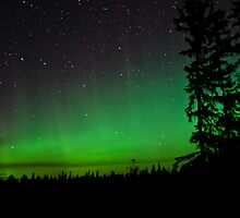 August 28th Auroras by peaceofthenorth