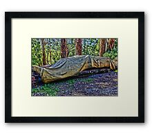 Puffing Billy, Belgrave Framed Print
