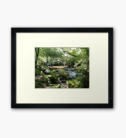 Tranquil water Framed Print