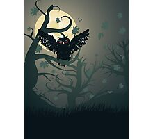 Owl in the Night Forest 2 Photographic Print