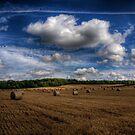 Hay Bales near Winchester, Uk by NeilAlderney