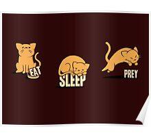 Cats: Eat, Sleep, Prey Poster