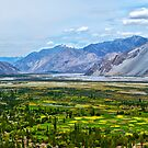 Nubra Valley-2/2011 by Mukesh Srivastava