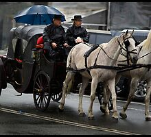 Horses &  Carriage  3 by John Van-Den-Broeke