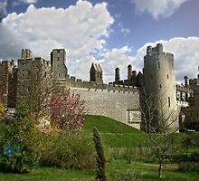 Arundel Castle side view by James Taylor