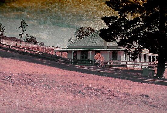 Fairy Floss Hill by Melissa Dickson