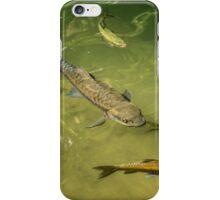 Fishpond iPhone Case/Skin