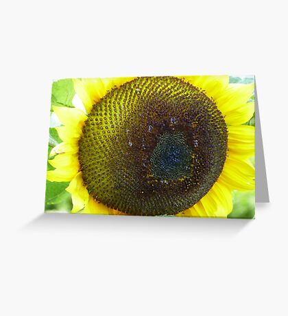 Yellow around the edges Greeting Card