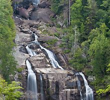 Whitewater Falls by Forrest Tainio
