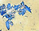 Falling in Blue by RC deWinter