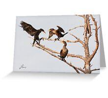 Strafing Cormorants Greeting Card
