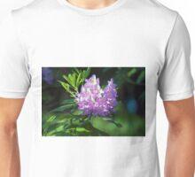 Longwood Gardens - Spring Series 100 Unisex T-Shirt