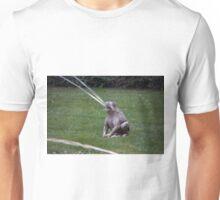 Longwood Gardens - Spring Series 101 Unisex T-Shirt