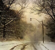 High Park Main Road by KatMagic Photography