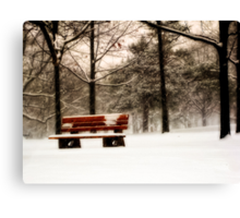Bench on Bloor Canvas Print