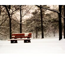 Bench on Bloor Photographic Print