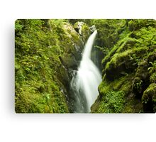 Mystic Water - Aira Force, Ullswater Canvas Print
