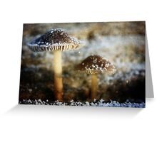 Pixie Lamps Textured Greeting Card