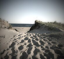 Martha's Vineyard by marycarnahan