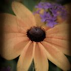 Vintage Flowers by marycarnahan