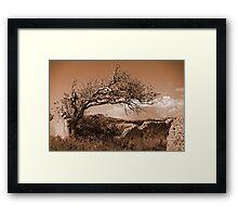 The Lost Village of Tide Mills Framed Print