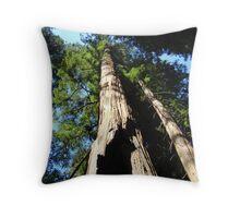 Towering Redwood Tree Forest art prints Big California Redwood Throw Pillow