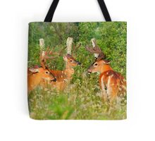 The Boys Only Thicket Club Tote Bag