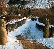 Guardian Spirits, Suwon, South Korea. by bulljup