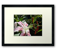 Lily Flower Close Up Floral art Print Pink Lilies Garden Framed Print