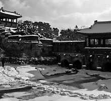 Hwaseong Fortress, Suwon, South Korea. by bulljup