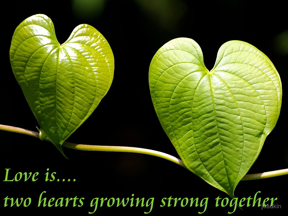 LOVE is two hearts growing strong together by jdadkin