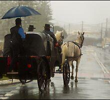 Horses & Carriage by John Van-Den-Broeke