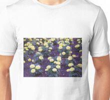 Longwood Gardens - Spring Series 107 Unisex T-Shirt
