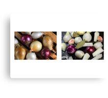 Onions Meet & Eat Canvas Print