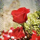 Anniversary Roses by Erica Yanina Lujan