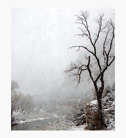 Zion Snowstorm Photographic Print