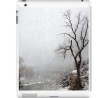 Zion Snowstorm iPad Case/Skin