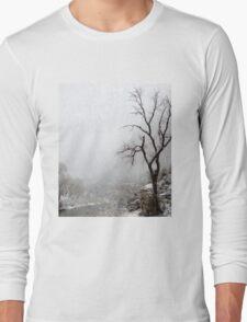 Zion Snowstorm Long Sleeve T-Shirt