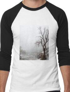 Zion Snowstorm Men's Baseball ¾ T-Shirt