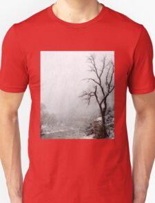 Zion Snowstorm Unisex T-Shirt