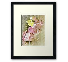 Hanging Basket Framed Print