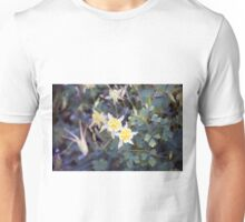 Longwood Gardens - Spring Series 111 Unisex T-Shirt