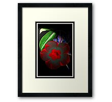 Dark Beauty!!! © Framed Print