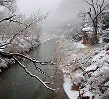Zion's Virgin River by Annie Adkins