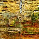 Textured Wall Abstract  by clizzio