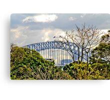 Through the trees - Sydney Harbour Bridge Canvas Print