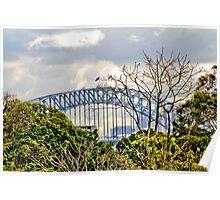 Through the trees - Sydney Harbour Bridge Poster