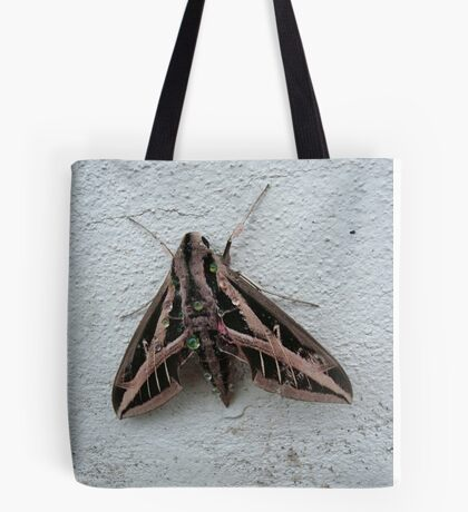 Sphinx Moth After Rain Tote Bag